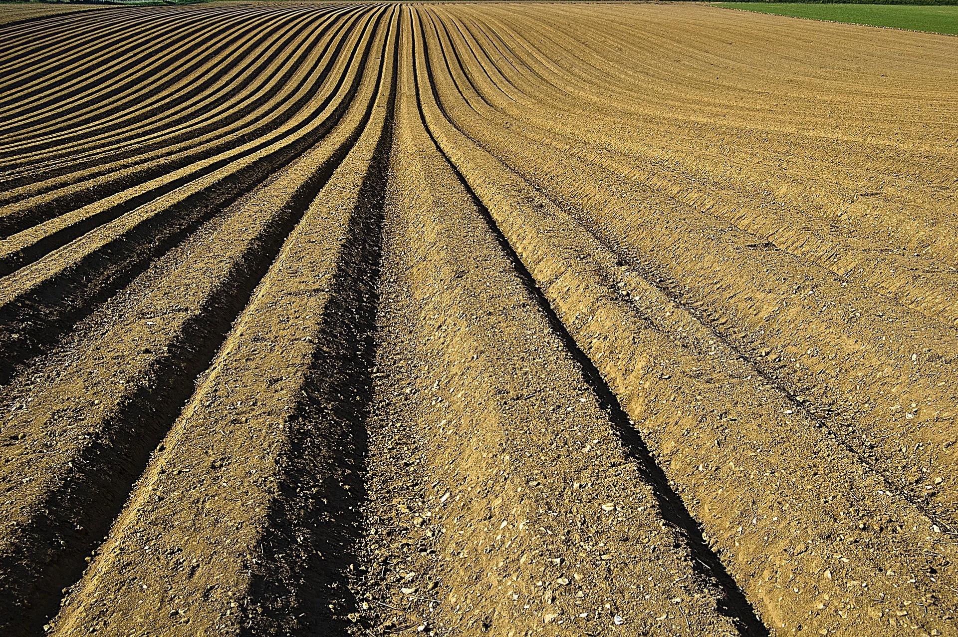 fertilizante-importação-exportação-comercio-exterior (1)