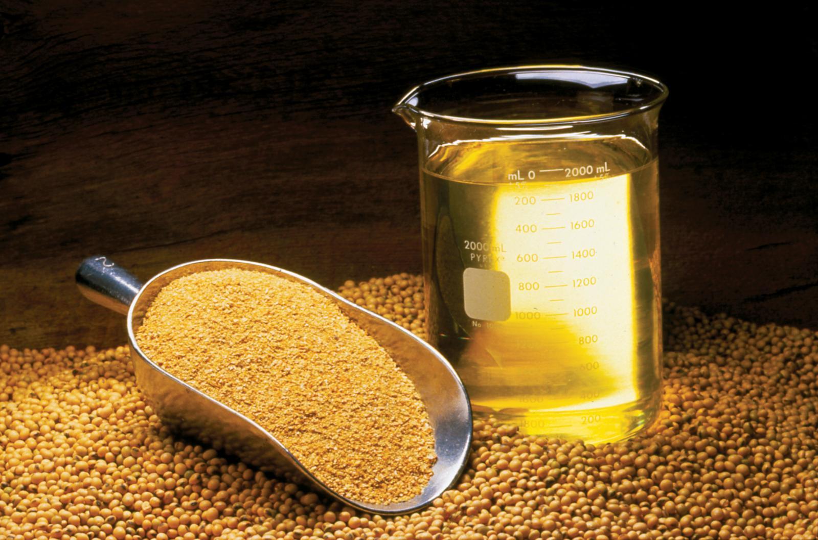 farinha-de-soja-soya-meal-importacao-exportacao-brazil-6